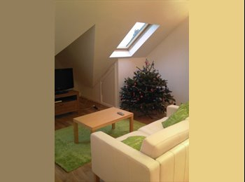 Spacious Bright and Airy One Bed Flat