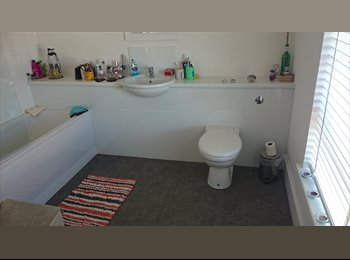 EasyRoommate UK - Double Room for rent - Westside, Aberdeen - £500 pcm