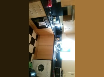 EasyRoommate UK - Room available in Riverside/Canton area of Cardiff. - Canton, Cardiff - £225 pcm