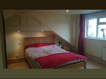 EasyRoommate UK - Spacious, double, EN-SUITE room in Enfield - Enfield, London - £600 pcm