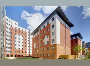 FIRST YEAR HALLS ROOM AVAILABLE in Liverpool