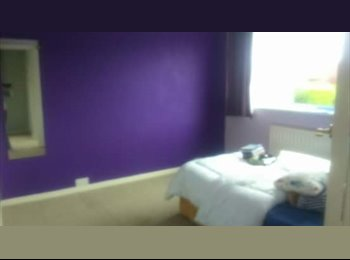 EasyRoommate UK - Double Room with additional room for storage/lounge area - Southam, Leamington Spa - £500 pcm