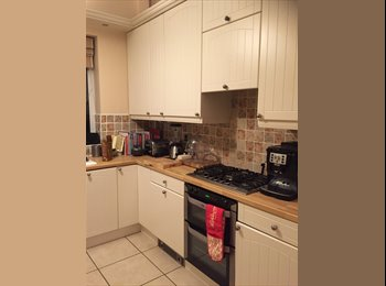 Room to let for young professional