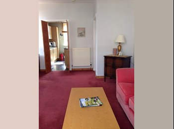 EasyRoommate UK - Room for let to a postgraduate female university student - Edinburgh Centre, Edinburgh - £500 pcm