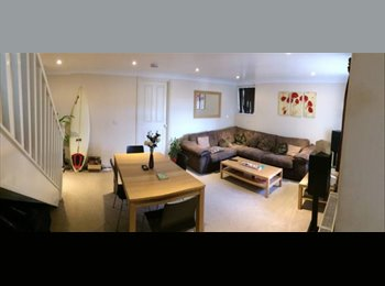 EasyRoommate UK - Large double in homely house - St Judes, Plymouth - £450 pcm