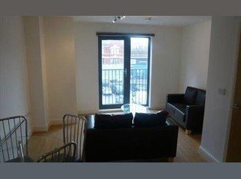 EasyRoommate UK - Furnished room for rent - Trumpington, Cambridge - £400 pcm