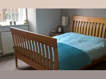 EasyRoommate UK - Lovely Double Room Available Monday - Friday - Newbridge, Edinburgh - £350 pcm