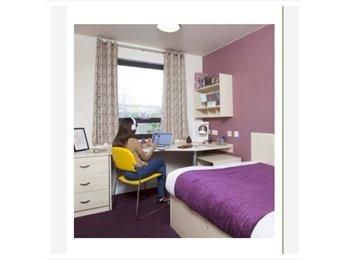 EasyRoommate UK - The Anvil accommodation (unit students) - Sheffield, Sheffield - £564 pcm
