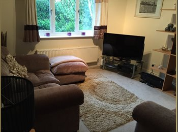 Double bedroom with bills and sky TV included