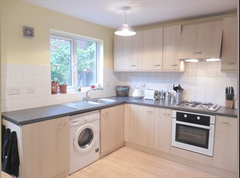 EasyRoommate UK - Excellent Double Room 20 Minutes from Central London - Bermondsey, London - £750 pcm