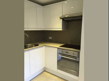 A fully refurbished 2 bed Victorian Flat