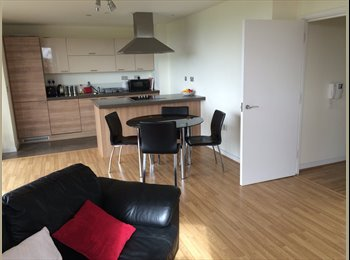 EasyRoommate UK - Ens-suite in Fully Furnished Apartment - Hackney, London - £878 pcm