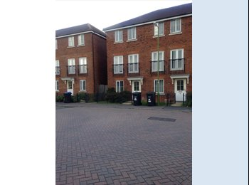 EasyRoommate UK - 2 single beds for rent. *rooms are quite spacious* - Hatfield, Hatfield - £480 pcm