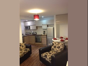 EasyRoommate UK - Whole of ground floor flat  - Manchester City Centre, Manchester - £500 pcm