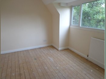 Large, recently refurbed detached house share