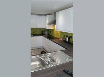 EasyRoommate UK - Newly Refurnished Ensuite Double Room - Selly Oak, Birmingham - £96 pcm