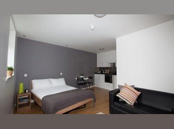 EasyRoommate UK - Studio Apartment For Short Stay - Westminster, London - £1,800 pcm
