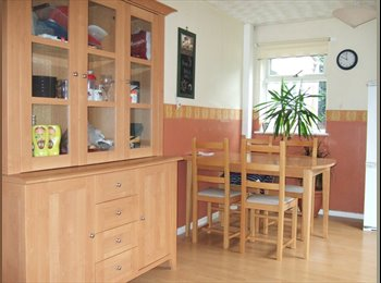 EasyRoommate UK - NICE BRIGHT LARGE ROOM SHARED HOUSE BRIGHTON HILL, Basingstoke - £372 pcm