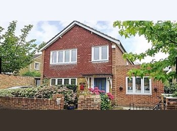 EasyRoommate UK - Beautiful 4 bedroom home next to Richmond Park - Kingston upon Thames, London - £700 pcm