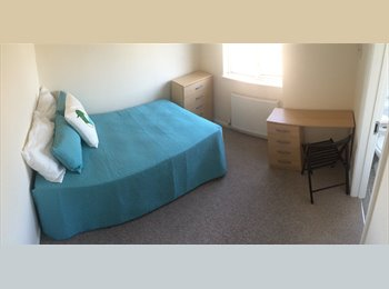 EasyRoommate UK - **LOVELY DOUBLE EN-SUITE ROOM IN FRIENDLY HOUSE**  - Laindon, Basildon - £650 pcm