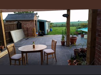 EasyRoommate UK - Room to rent In Gedney Hill - Gedney Hill, Spalding - £260 pcm