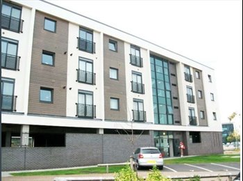 EasyRoommate UK - 2 bedroom flat available in Paladine Way, Coventry - Willenhall, Coventry - £344 pcm