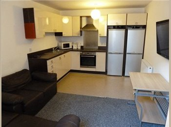 EasyRoommate UK - Multiple Ensuite Rooms available for rent - Plymouth - St Judes, Plymouth - £95 pcm