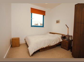 beautiful penthouse flat