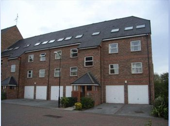 EasyRoommate UK - The best yet! Double room with bathroom in the centre of York, fabulous!!  - The Groves, York - £380 pcm