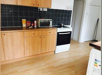 EasyRoommate UK - Lovely Double Room - Upper Stoke, Coventry - £433 pcm