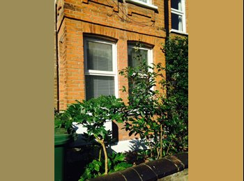 Double Room in Walthamstow