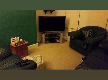 EasyRoommate UK - Double Room in House Share - Old Swan, Liverpool - £250 pcm