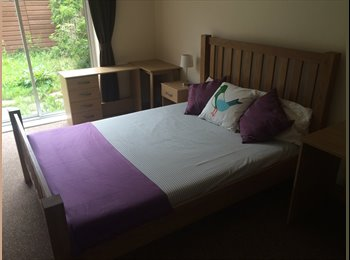 ***LARGE Double Room in Friendly Houseshare***