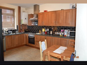 EasyRoommate UK - ** a SPECTACULAR recently RENOVATED, MODERN, spacious, QUALITY Rental** - Burley, Leeds - £325 pcm