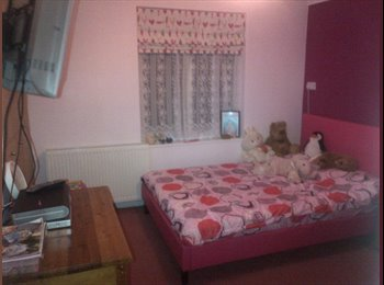 EasyRoommate UK - Double Room to Let - Harlow, Harlow - £360 pcm