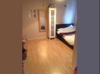 Large double room to rent with 2 females in lovely 3...