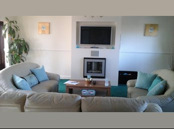 EasyRoommate UK - Room to rent - Waterlooville, East Hampshire and Havant - £340 pcm