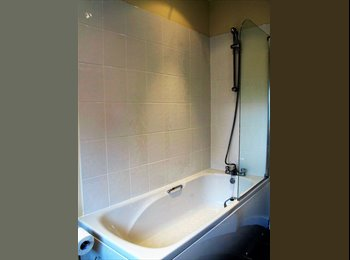 Newly refurbed 4 bed professional houseshare