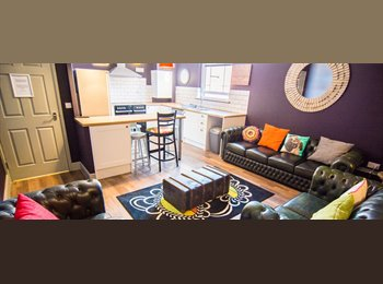 EasyRoommate UK - Room avail NOW. 6 bed female student flatshare - Knighton, Leicester - £400 pcm