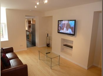 PROFESSIONAL HOUSE SHARE - £399 PPPCM - BILLS INCLUDED