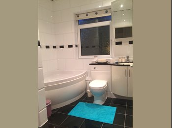 EasyRoommate UK - 2 rooms for price of 1 - Darfield, Barnsley - £350 pcm