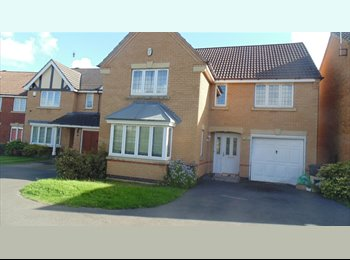 EasyRoommate UK - LARGE ROOMS 2 RENT - Glenfield, Leicester - £400 pcm