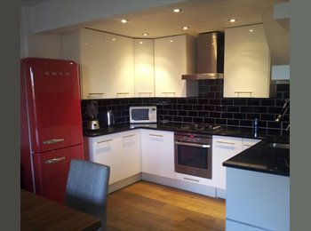 A superb room to rent in King's Cross, Caledonian Road, N1