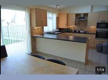 EasyRoommate UK - 1 bedroom available  - Canterbury, Canterbury - £435 pcm