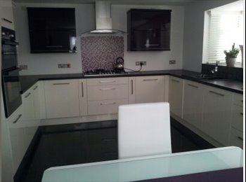 EasyRoommate UK - single and double room in modern home.  - Hinckley, Hinckley and Bosworth - £350 pcm