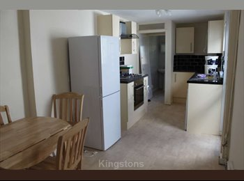 EasyRoommate UK - Room with double bed for rent £275 pcm - Cathays, Cardiff - £275 pcm