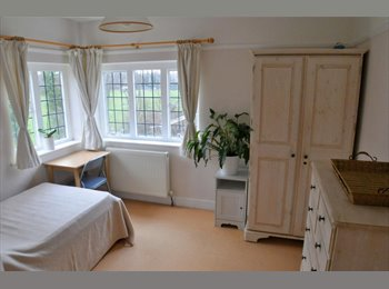 Large single room available - West Acton/North Ealing