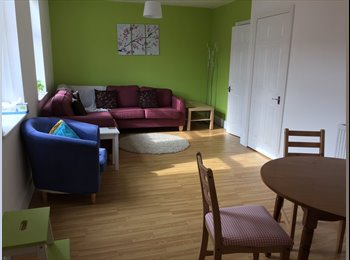 EasyRoommate UK - Double room in friendly 5 bed house - Heaton, Newcastle upon Tyne - £300 pcm
