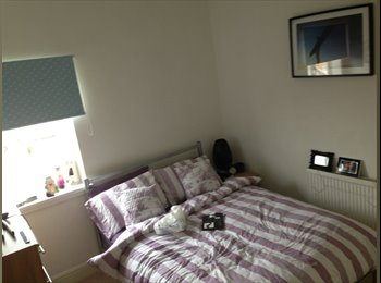 EasyRoommate UK - Double room available in professional house share  - Crookes, Sheffield - £435 pcm