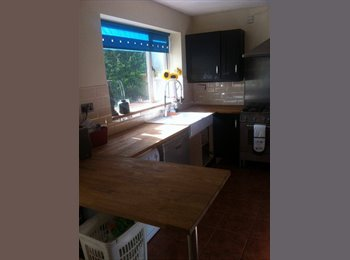 EasyRoommate UK - 1 double room, live in landlord, available 1st Decemeber - Walsall Wood, Walsall - £400 pcm